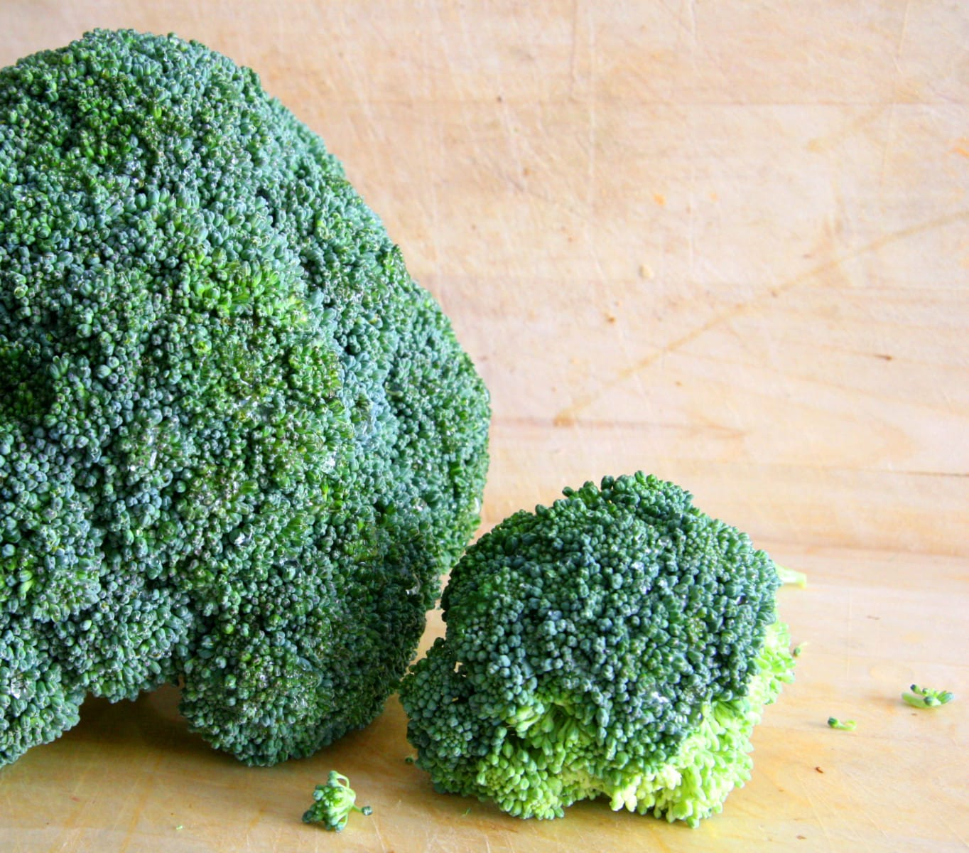 broccoli-1318644 (2)